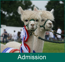 admission-hp