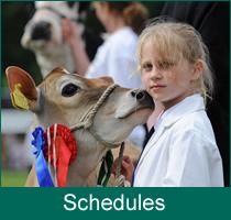 schedule-hp
